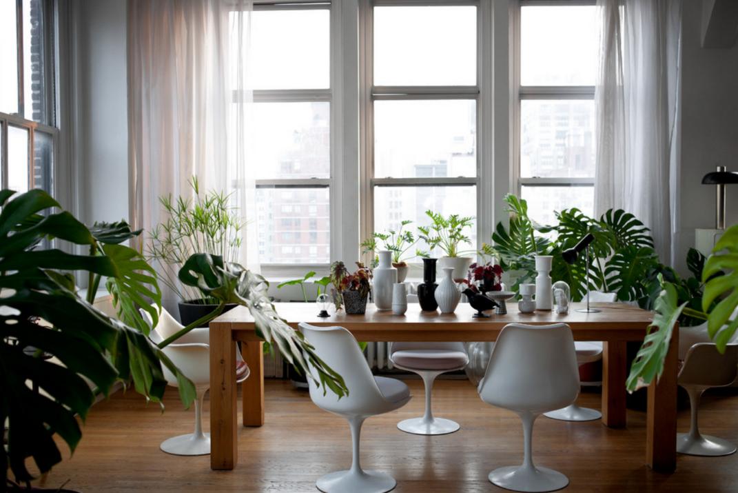 loft-Manhattan-plants