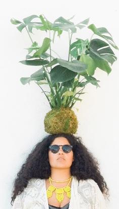justina-blakeney-loves-plants